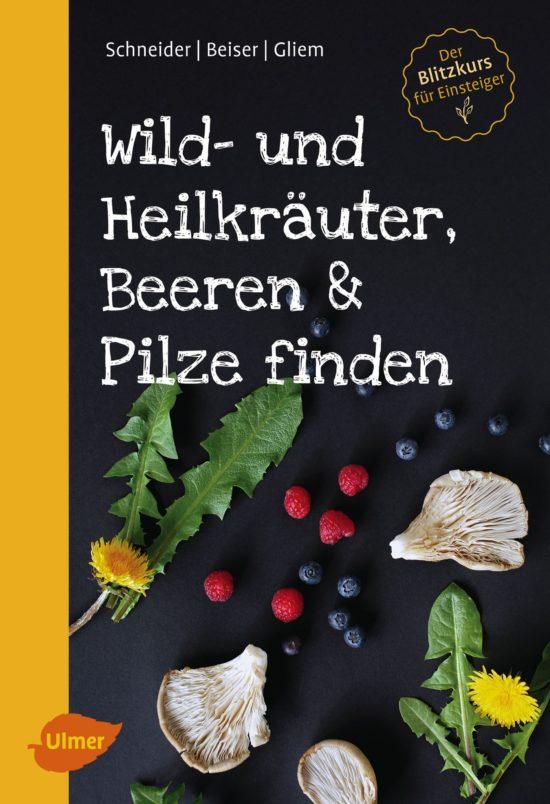 Wild- und Heilkräuter, Beeren & Pilze finden