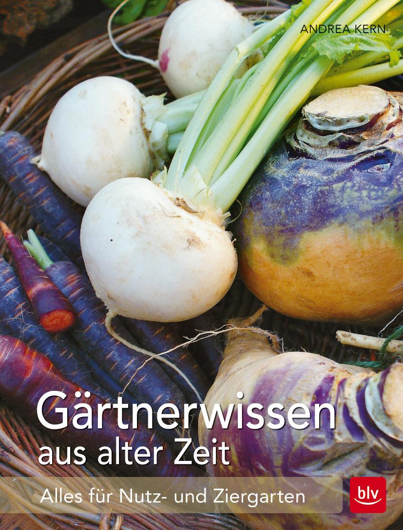 Gartenarbeiten Im Frühling: Was Ist Im März Im Garten Zu Tun? Gartenarbeit Fruhling Fruhlingsbeginn Tipps