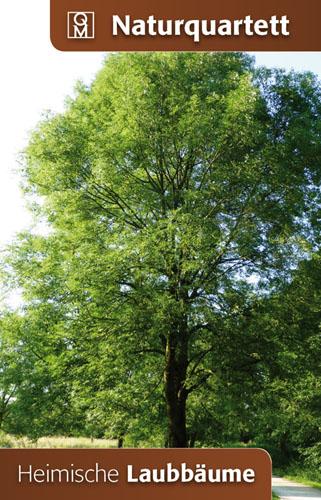Heimische Laubbäume, Naturquartett