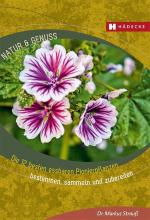 Die 12 besten Pionierpflanzen