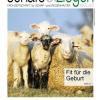 Schafe und Ziegen aktuell