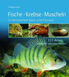 Fische Krebse Muscheln