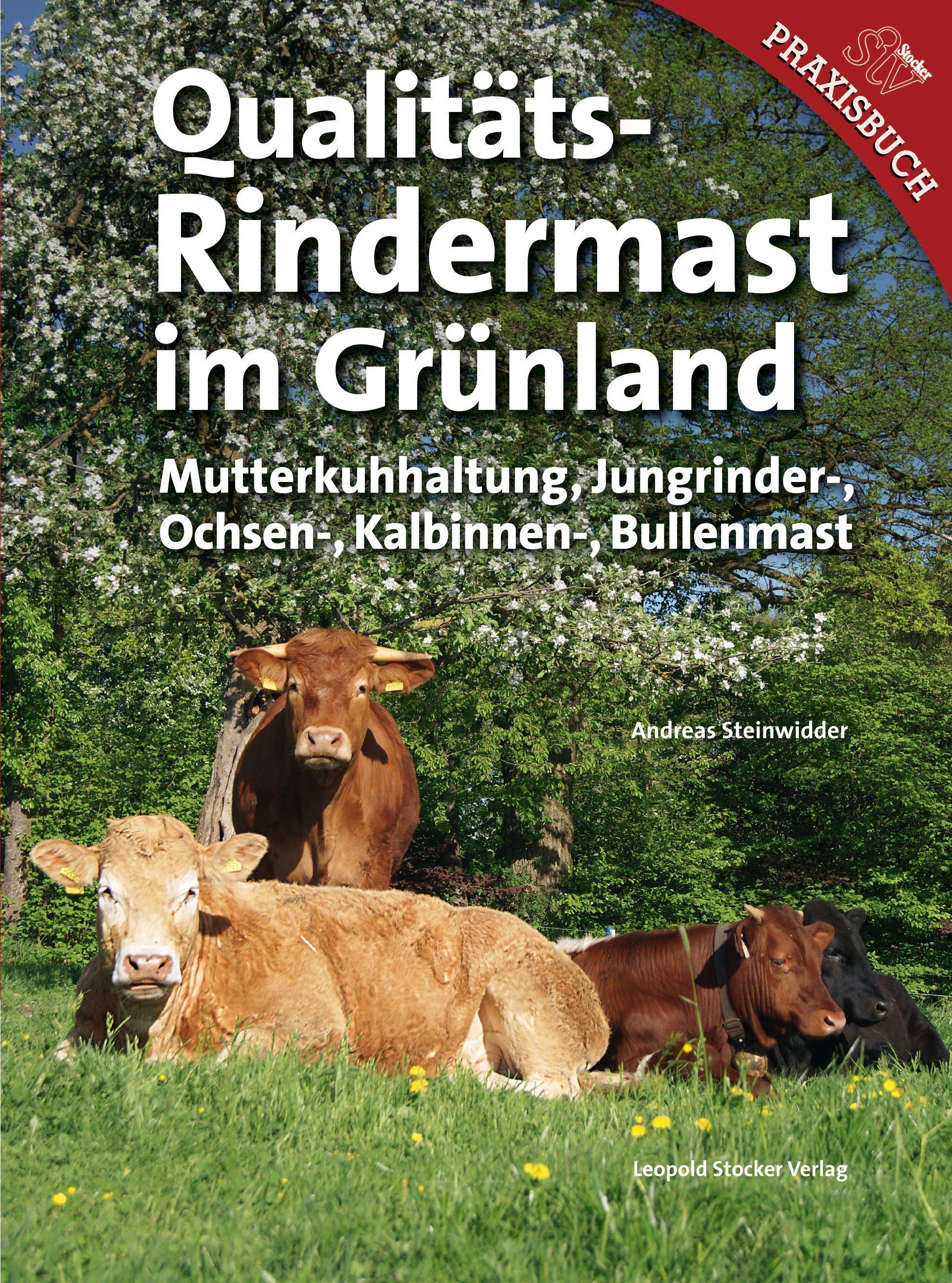 Qualit�ts-Rindermast im Gr�nland
