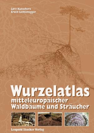 Wurzelatlas mitteleuropäischer Waldbäume und Sträucher