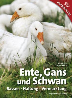 Ente, Gans Und Schwan