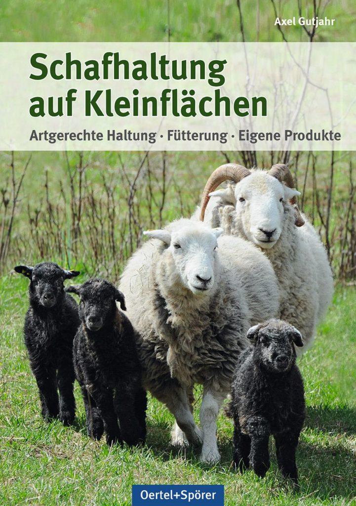 Schafhaltung auf Kleinflächen